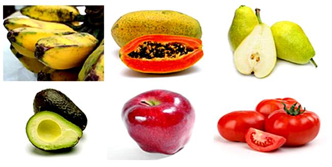 Di alam bebas, cucakrawa sangat menyukai buah-buahan. [ foto : smartmastering.com ]